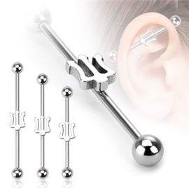 Industrial piercing PIN00001