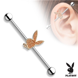Industrial piercing - Playboy PIN00050